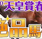 やーしゅん馬体予想_天皇賞(春)