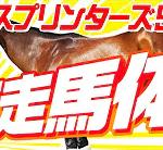 やーしゅん馬体予想_スプリンターズステークス