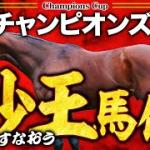 やーしゅん馬体予想_チャンピョンズカップ