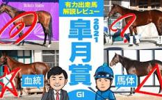 やーしゅん馬体_皐月賞