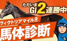 やーしゅん馬体予想ヴィクトリアマイル2021