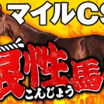 やーしゅん馬体予想_マイルチャンピオンシップ